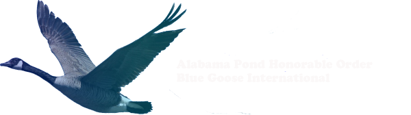 Alabama Pond - Blue Goose International